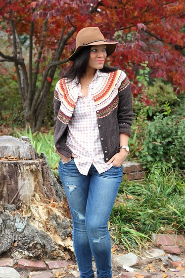 Johnnalynn Lynch - J. Jill Country Fair Isle Cardigan, Splendid Gingham Blouse, Mossimo Deconstructed Skinny Jeans - Fall Print Mix