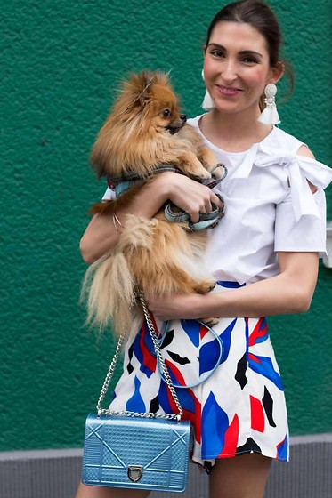 Malia Keana - H&M Earrings, Christian Dior Bag, Mr Price Shorts, Chloe Bouw Blouse - Bow blouse and dior bag and Pomeranian Karl