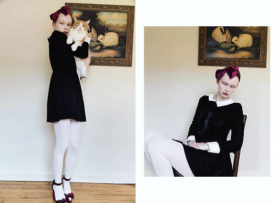 Sarah Wu - Express Velvet Bow Shoes, Amazon Velvet Peter Pan Dress - Kittens and Bunnies