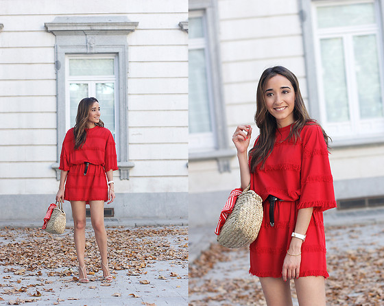 Besugarandspice FV - Zara Dress - Red Dress
