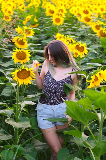 Simina E. - H&M Top, H&M Shorts - Sunflower gal