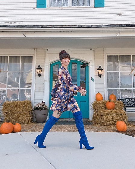 Jessie Bee - Shoedazzle Portia Over The Knee Boots, Ettika Large Coin Lariat Necklace - Fall Boots