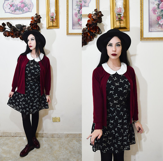 Elsa Lucía Flores - Biography Peter Pan Collar Black Dress, Wintour Red Wine Wool Cardigan, Refill Red Lace Up Shoes, Zaful Black Fedora Hat - Dying Flowers