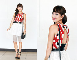 Dominique Marie Tiu - Zara Printed Cropped, Carven Embroidered Skirt, Céline Trio, Zara Ankle Heels - One Problem Less