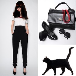 Emilia Li - Zara Top, Zerouv Sunglasses, Dolce & Gabbana Bag, Donna Girl Heels, Second Hand Neckless, Josepf High Waisted Pants, My Cat :) - Bad Hair Day