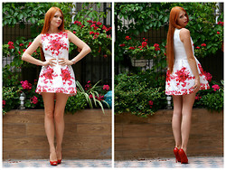 Brandator Nadin - Sheinside Dress, Christian Louboutin Heels - Red Flowers ;-)