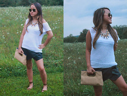Cassandra Dotzel - Converse Knit Sweater, Zara Leather Skort, C.Wonder Leopard Sandals, Ray Ban 60s Vintage Sunglasses, Born Pretty Tribal Bib Necklace, Michael Kors Weft Clutch - In the Country