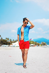 David Guison -  - Bright & Breezy