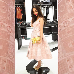 Kim Anne C - Giles Pink Pre Fall Dress, Maison Du Posh Gold Wallet Clutch, Aquazzura Nude Positano Pumps - On Cloud Nine