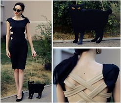 Kary Read♥ - Oasap Dress - With my Cat)