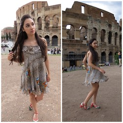 Anne C -  - A day in the Colosseum