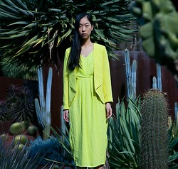 Cissy Zhang - Forcast Yellow Jacket, Forcast Yellow Dress - Exotic garden