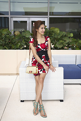 Christina Oh - White House Black Market Dress, Chanel Bag, Valentino Shoes - A SUNNY DAY & A FLORAL DRESS