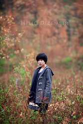 Chibi Gumiho -  -  Miss my december
