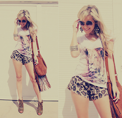 Joicy Muniz - Urban Outfitters Sunglasses, Forever 21 Earrings, Lolla T Shirt, Miss Lolla Shorts, Forever 21 Bracelet, Love.D Bag, Arezzo Shoes - Animal Print Boho!