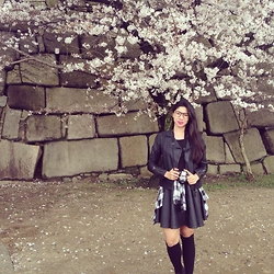 Cassey Cakes - Topshop Leather Jacket, Topman Flannel Top, Topshop Circle Skirt - Under the Cherry Blossoms