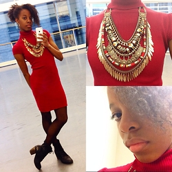 Dara H. - Aldo Statement Necklace - Necklace