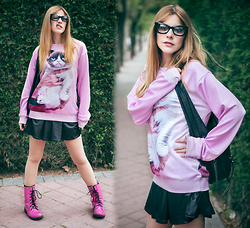 Vita Dinamita - Choies Sweater, Bershka Skirt, Freyrs Glasses - Grumpy Cat