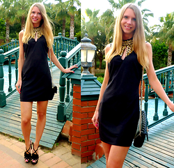 Ania Zarzycka - Dress - Shine on! :)
