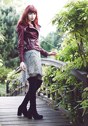 Lady Juliet - Karen Millen Biker Jacket, Miista Emi Boots, Kaos Leopard Dress - Burgundy Jacket