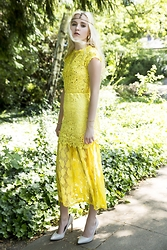 Nicola Marleen - Dressgal Dress - Yellow Fairy