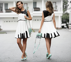 Queen Horsfall - Chinese Laundry, Chic Wish Skater Dress, Stylenanda - Elegant Weekend
