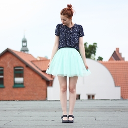 Eva Fi - Boohoo Tulle Skirt, Zara Blouse - On the roof