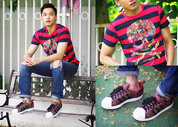 Chris Su - Ed Hardy Tee, Adidas Originals Shoes, Hollister Jeans - Holiday again