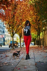Maria P - Armani Exchange Black Tee, Springfield Red Skinny Jeans, Star Print Scarf, Ankle Boots With Buckle - Seeing Red