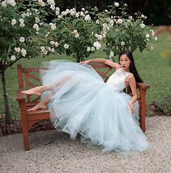 Cissy Zhang - Begitta Tulle Prom Dress - Cinderella's dress