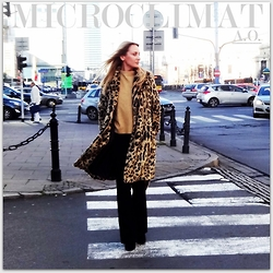 Microclimat.pl -  - Look of the day