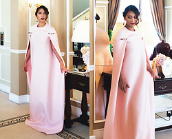 The Ambitionista - Fiziwoo Gown - Beauty in Blush Pink