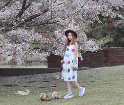 Mayo Wo - Ziztar Print Dress, Teva Flatforms - Cherry usagi