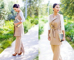The Ambitionista - Maxmara Tan Coat - Tan in Chic