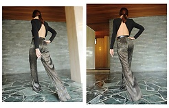 FASHION MOODS - Zara Sheer Pants, Romwe Backless Crop Top - GLITZ