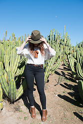 Jordan Jones - Anthropologie Blouse, Madewell High Riser Jean, Blues And Shoes Booties - Wild Wild West