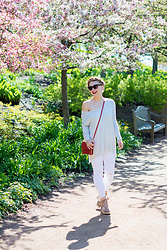 Ashley Hutchinson - Hammitt Red Leather Crossbody, Forever 21 Taupe Lace Up Wedges, J Brand White Ripped Jeans, Zara Drape Gray Sweater, Valentino Red Lace Sunglasses - Amongst the Blooms