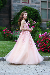 Beauty Mark Lady -  - Cinderella dress