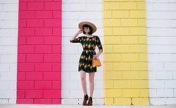 Amy Roiland - Strathberry Bag - Colors