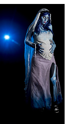 Eva Xebra - Black Milk Clothing Bm Leg Bones X Ray Leggings, Nyx Midnight Blue Wig - Corpse Bride