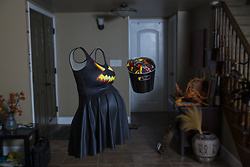 Eva Xebra - Black Milk Clothing Jack O Lantern Skater Dress - Invisible Pregnancy