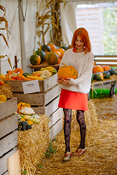 Michaela Scalisi -  - The pumpkin story