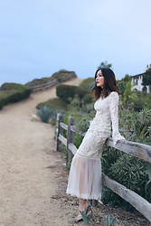 Tracy Qiu -  - The White Lace Dress