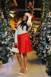 ManueLita - Liu Jo Sweater, Blumarine Skirt, Gianvito Rossi Shoes, Vintage Bag -  Christmas is coming ...