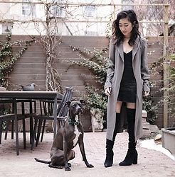 Christie Ashley - Babaton Caterina Trench Coat, Jaest Silk Slip Dress, Stuart Weitzman Over Knee Boots - BROOKLYN