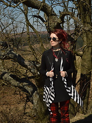 Shira Elizabeth - Primark Black Round Sunglases, Orsay Black Blazerjacket, Atmosphere Striped Cardigan, H&M Black Looong T Shirt, Monaga Red Tartan Pants, Restyle Cameo Pendant With Ravens, Vězeň Fantazie Vial Pendant With Dandelion Seeds, Ebay Blue Tattoo Choker - Spring and shine ^^
