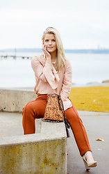 Olivia B. - Ann Taylor Top, Ann Taylor Pants, Just Fab Bag, Calvin Klein Heels - Orange You Glad