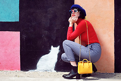 Amy Roiland - Strathberry Bag - Meow Meow