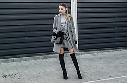 Charlotte . - Zara - Grey look