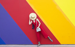 Amy Roiland - Radley London Bag - Rainbow wall /